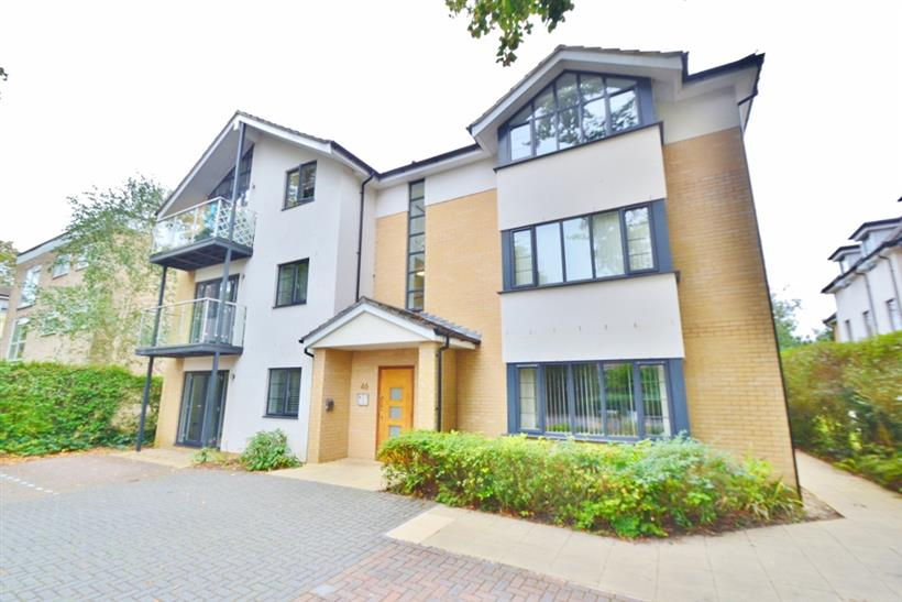 Modern, Well-Presented Apartment To Let!